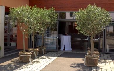 Deko-Eingang