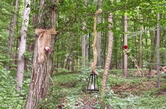 Dekoration-Wald
