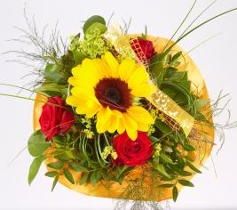 Sonnenblume-Rosen