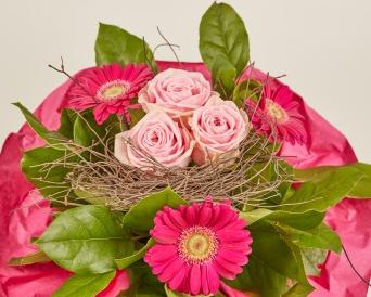 gerbera+rosen